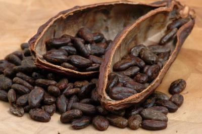biji-cokelat